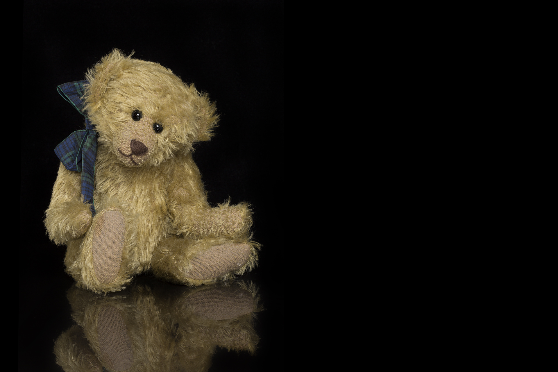 Dill - the Teddy Bear